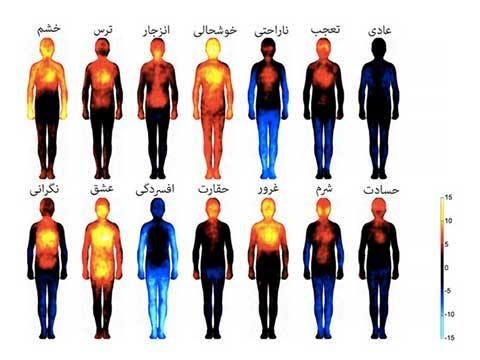 توسط دانشمندان فنلاندی «تصویر سازی مناطقی که توسط احساسات هدف گرفته میشوند» ....jpg