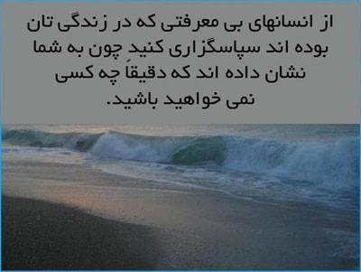 1551457_403193999823984_1404732304_n.jpg
