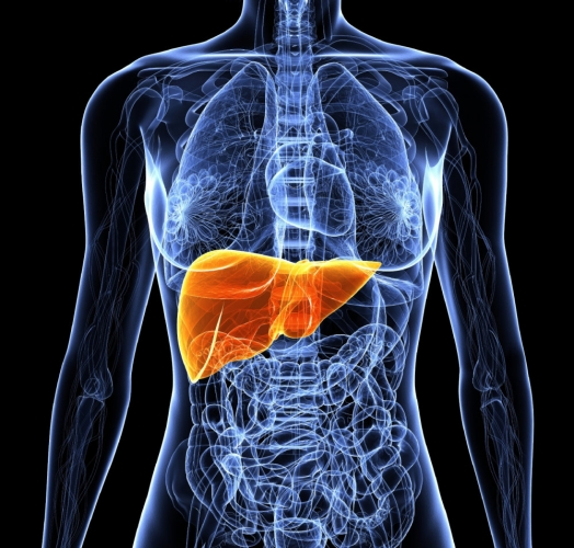 Causes-of-Chronic-Liver-Disease1.jpg
