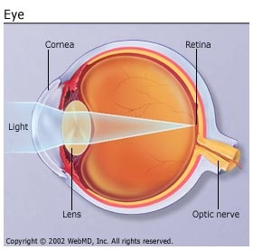 Multiple_Sclerosis_Vision_Problems.jpg